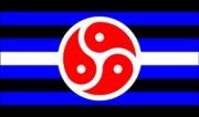bdsmrightsflag